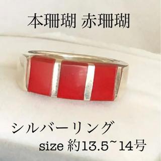 ヴィンテージ  本珊瑚 赤珊瑚 シルバーリング 約13.5~14号(リング(指輪))