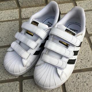 アディダス(adidas)のadidas スーパースター サイズ18.5cm(スニーカー)
