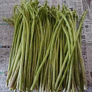 えいたん様専用  佐賀県産グリーンアスパラ2セット(野菜)
