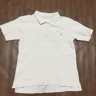 ピンクハウス(PINK HOUSE)のポロシャツ(Tシャツ/カットソー)