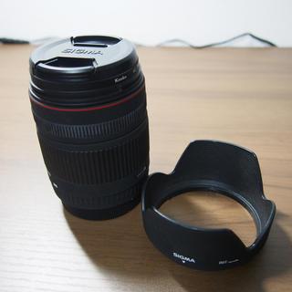 キヤノン(Canon)のSIGMA DG 28-300mm Canonマウント(デジタル一眼)