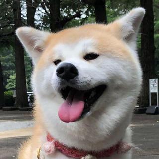 ザラ(ZARA)のこはるどの専用♡♡(ロングワンピース/マキシワンピース)
