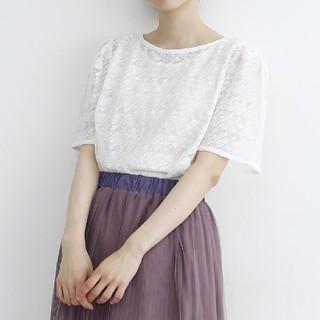 メルロー(merlot)のmerlot シースルー半袖レースブラウス ホワイト(シャツ/ブラウス(半袖/袖なし))