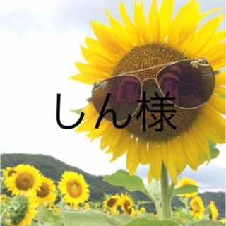 コバヤシセイヤク(小林製薬)のしん様専用&確認用(その他)