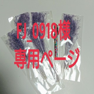 FJ_0918様専用ページ(ドライフラワー)