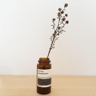 イソップ(Aesop)のaesop イソップ インテリア ミニマリスト 瓶 空き瓶 アロマ 花瓶(置物)