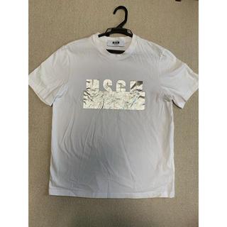 エムエスジイエム(MSGM)の最終値下げ!MSGM Tシャツ(Tシャツ(半袖/袖なし))