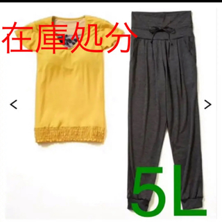 5L 新品未使用  水陸両用カップ付Tシャツ&ボトム2点セット(水着)