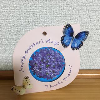 スタディオクリップ(STUDIO CLIP)のStudio clip 缶 ノベルティ(その他)
