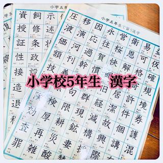 小学校5年生で習う 漢字 185字 国語 知育教材 勉強(知育玩具)