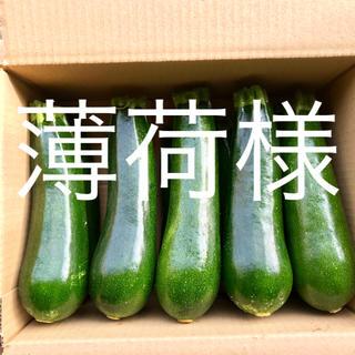 鹿児島産甘ズッキーニ2キロ^_^(野菜)