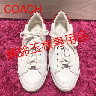 コーチ(COACH)のCOACH❗️スニーカー❗️白スニーカー(スニーカー)