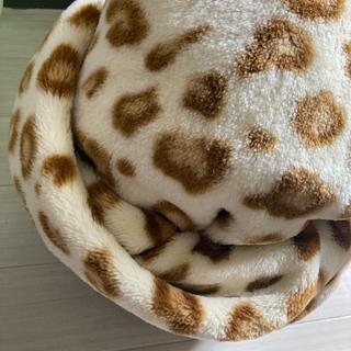 シマムラ(しまむら)のふわふわなヒョウ柄の毛布 (毛布)