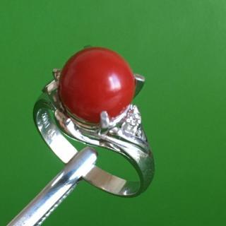 プラチナ Pm900珊瑚 赤サンゴ 8.4mm ダイヤモンド0.02ct リング(リング(指輪))