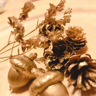 金色  ミニコーンと小さなお花  ハーバリウムにクリスマスに(その他)