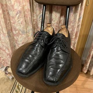DOUCAL footmaster デュカル ドレスシューズ  ビジネスシューズ(ドレス/ビジネス)