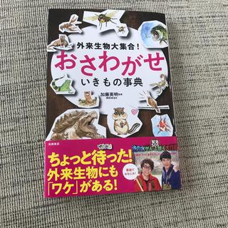 外来生物大集合!おさわがせいきもの事典(絵本/児童書)