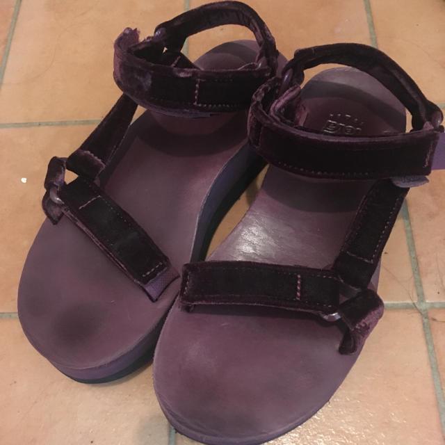Teva(テバ)のteva/テバ/ベロアサンダル。 レディースの靴/シューズ(サンダル)の商品写真