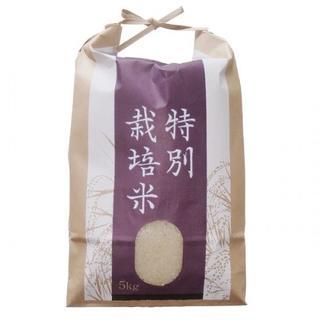 令和元年度新米☆キセキのお米☆【ミネラル縄文のひかり】☆精米4.5kg☆(米/穀物)