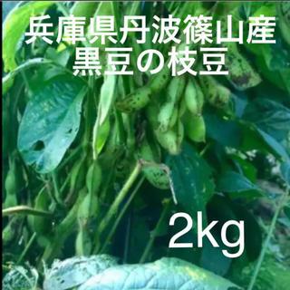 丹波篠山産 黒枝豆さやのみ2kg (野菜)