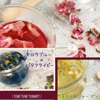 カラーブレンドハーブティー*3種セット(茶)