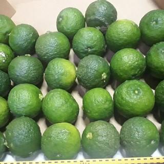 pan0120様専用 2.5kg  国産 無農薬 青柚子 送料無料 ゆず(フルーツ)