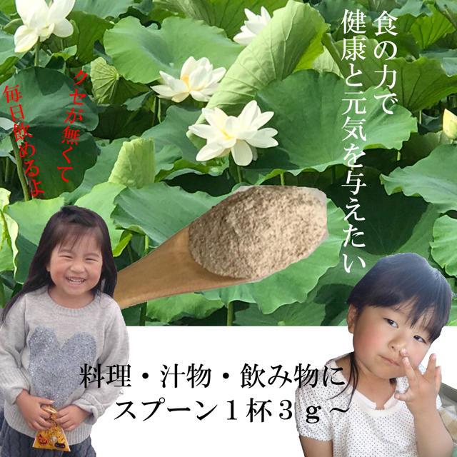 レンコン農家自作レンコンパウダー80g3袋セット 送料無料 食品/飲料/酒の食品(野菜)の商品写真