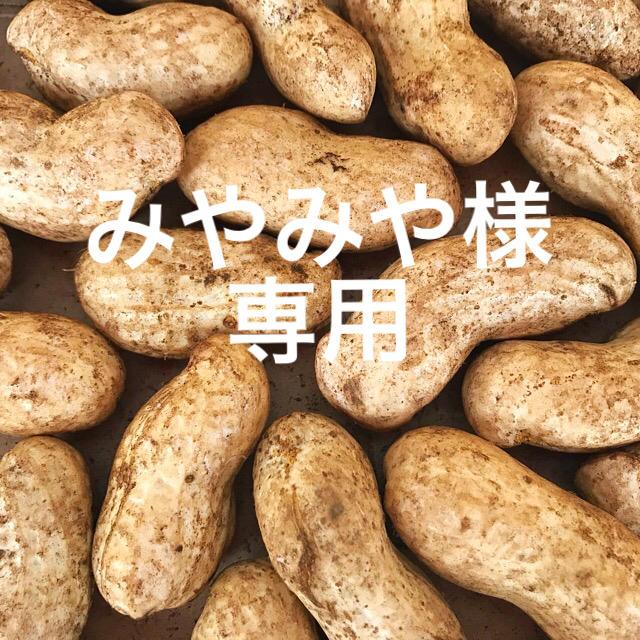 生落花生 千葉県八街産 おおまさり 食品/飲料/酒の食品(野菜)の商品写真