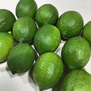 愛媛県産 グリーンレモン 12玉(約1kg)(フルーツ)