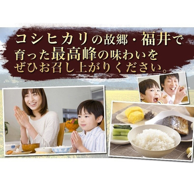 無洗米 コシヒカリ 5kg×2 10kg 福井県 お米 令和元年産 2019年 食品/飲料/酒の食品(米/穀物)の商品写真