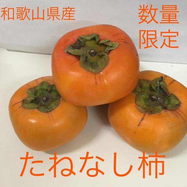 和歌山県産 たねなし柿 ご家庭用 7.5キロ 食品/飲料/酒の食品(フルーツ)の商品写真