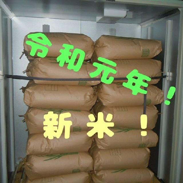 新米!令和元年産長野県産減農薬コシヒカリ白米20㎏ 農家直送 食品/飲料/酒の食品(米/穀物)の商品写真