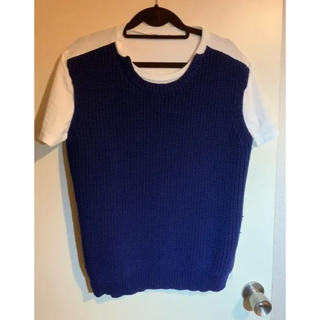 ミナペルホネン(mina perhonen)のミナペルホネン ニットベスト風 Tシャツ(Tシャツ(半袖/袖なし))