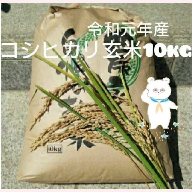 新米 茨城県産コシヒカリ玄米10kg 食品/飲料/酒の食品(米/穀物)の商品写真