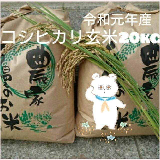 新米 茨城県産コシヒカリ玄米20kg 食品/飲料/酒の食品(米/穀物)の商品写真