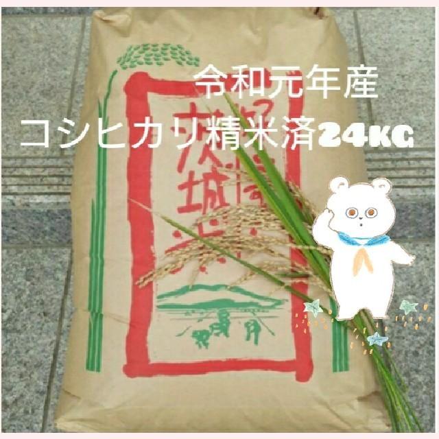 新米 茨城県産コシヒカリ精米済24kg 食品/飲料/酒の食品(米/穀物)の商品写真