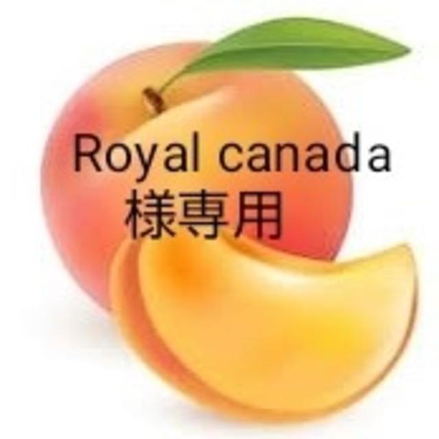 Royalcanada様専用家庭用桃大きいサイズ6個入り 食品/飲料/酒の食品(フルーツ)の商品写真