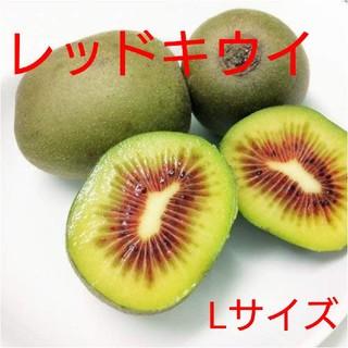 チアリー様専用 キウイフルーツ【レッドキウイ】Lサイズ以上 1キロ(フルーツ)