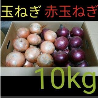 北海道産 減農薬 玉ねぎ 赤玉ねぎ 10キロ(野菜)