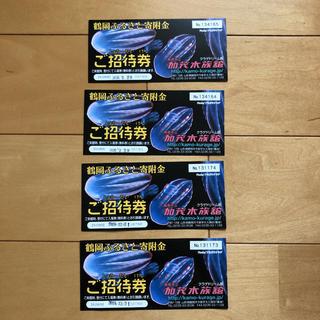 加茂水族館 チケット4枚セット(水族館)