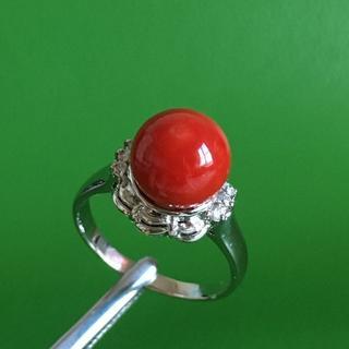 プラチナpt900 赤珊瑚サンゴ 9.6mm リング 指輪(リング(指輪))