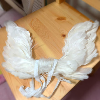 VOLKS - ボークス、天使の翼、羽(羽めくれ有り)