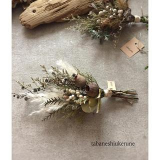 ベルギーナッツとパンパスグラスを束ねた 秋冬に飾る スワッグ ドライフラワー(ドライフラワー)