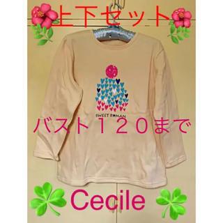 セシール(cecile)の大きいサイズパジャマ上下   フリースルームウェア (パジャマ)