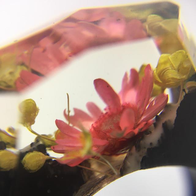 リング#15 樹脂+木 指輪 レディースのアクセサリー(リング(指輪))の商品写真