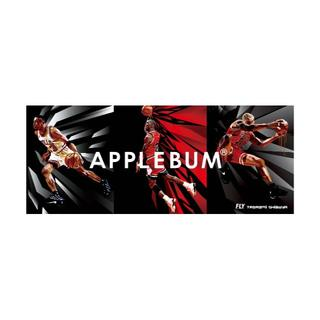 APPLEBUM - APPLEBUM シカゴ ステッカー1  Chicago Sticker
