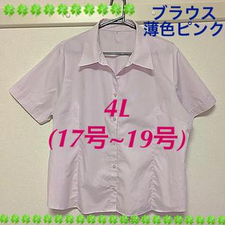 え〜君 様  事務 開襟ブラウス ピンク  4L(シャツ/ブラウス(半袖/袖なし))