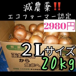 北海道産 減農薬  玉ねぎ 2Lサイズ 20キロ(野菜)