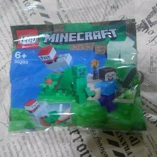 Lego - LEGO  マインクラフト  30393 正規品
