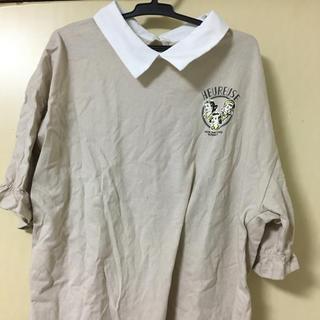 シマムラ(しまむら)の襟付きトップス(シャツ/ブラウス(半袖/袖なし))
